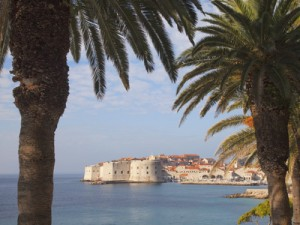 Old Town Through Palm Trees, Dubrovnik, Croatia, Europe